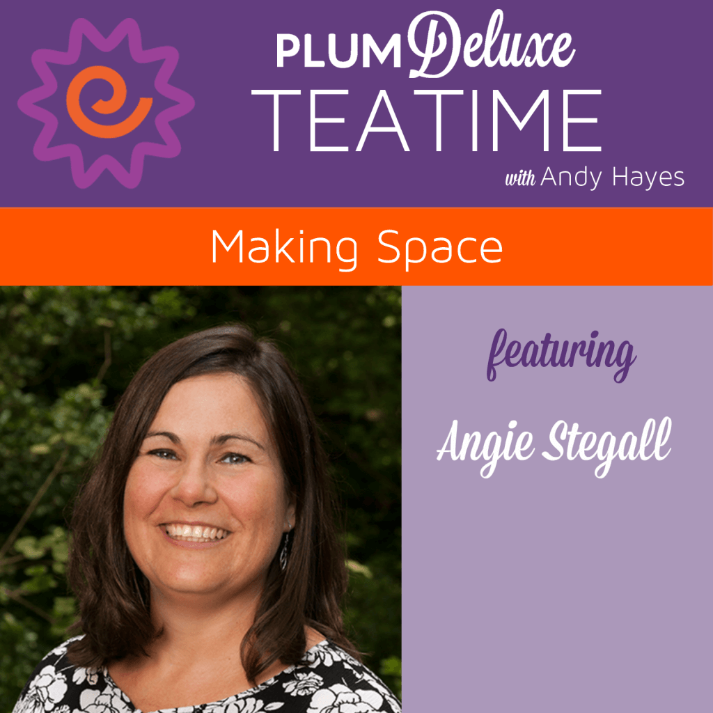 angie stegall