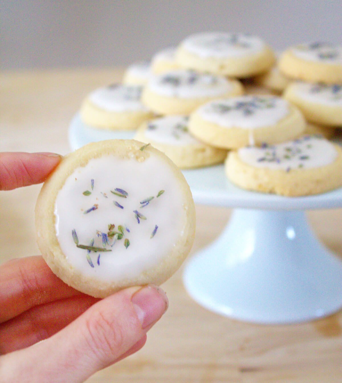 Closeup of a hand holding a tea cookie with icing and lavender buds. A plate of cookies stands in the background.